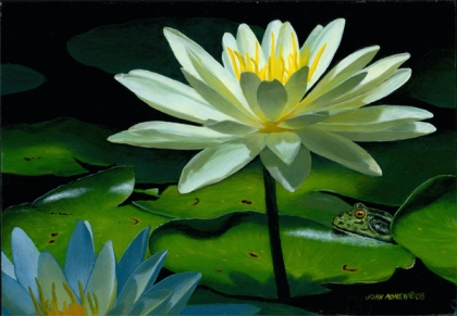 """Waterlily and Frog"" 8x10 acrylic on panel"
